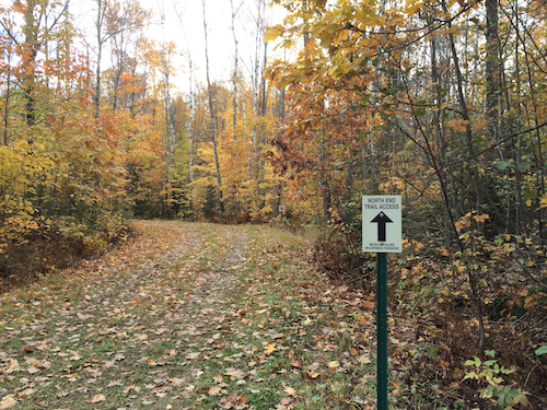 North end trail in autumn