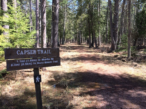 Capser trail in spring