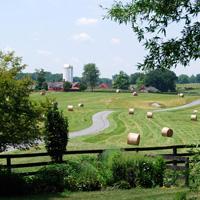 The Farm at Goodstone