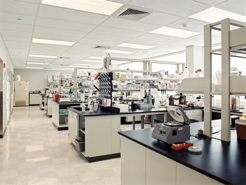 Novagen Laboratory Space