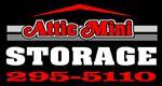 Attic Mini Storage