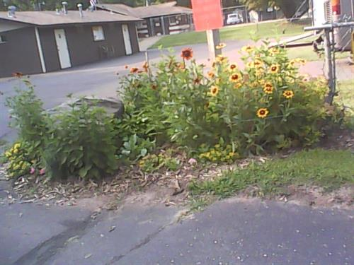 Nice flower beds around campgrounds. 7-2-2015 photo
