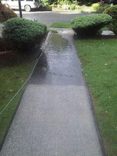 As well as cleaning windows, we provide power washing, gutter/roof cleaning, and house washing services.