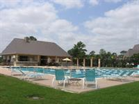 Our Pool - Home of Raveneaux Racers