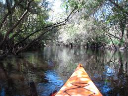 Little Manatee River Kayaking