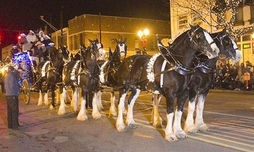 Fantasy of Lights Parade with Clydesdales
