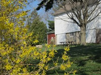 Schumacher Farm in Spring.