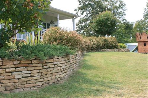 This was a front lawn with a steep slope and not much usable garden space, so we built prominent garden walls to use the terrain to our advantage.