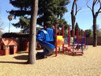 Park like backyard