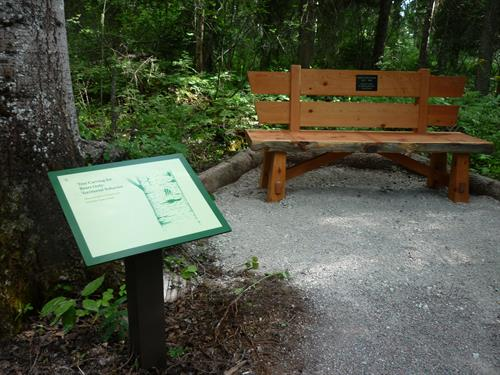 Interpretive Signs and Bench Memorial Plates