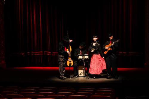 ¡Flamenco!
