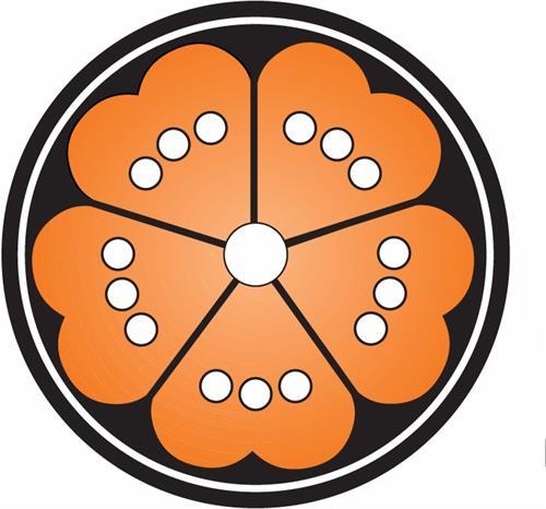 Gallery Image MG_logo_orange_black_2007.JPG