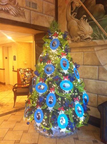 Our Beatiful Tree
