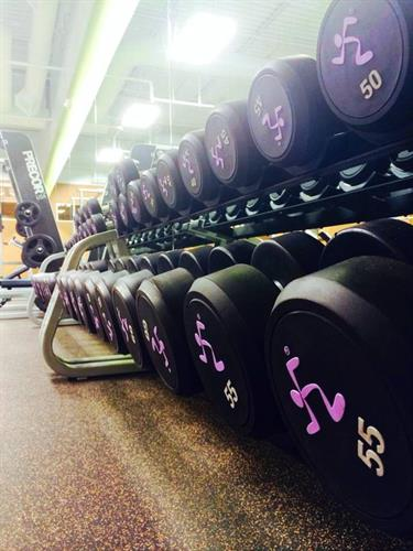 Dumbells up to 100lbs