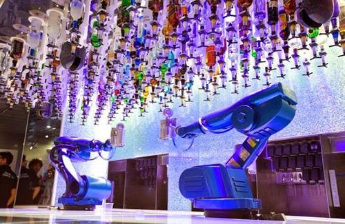 Robotic Bionic Bar