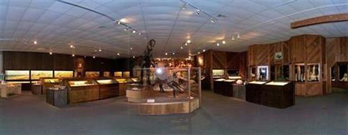 Brazosport Museum of Natural Science