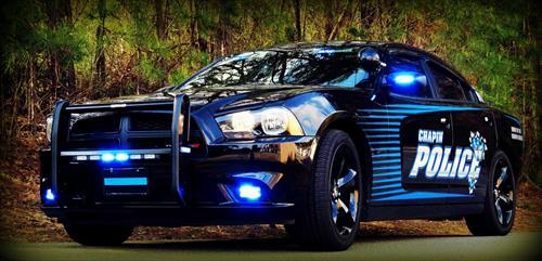 Chapin Police cruiser