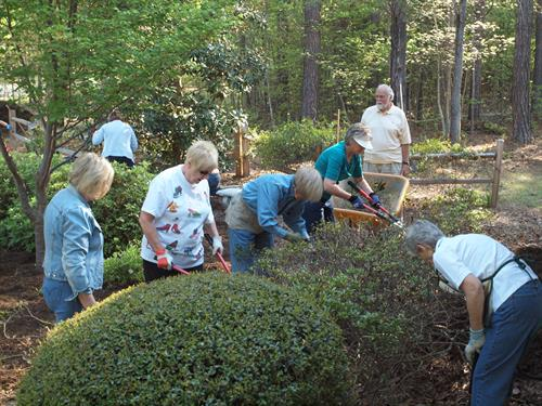 Community Service Day