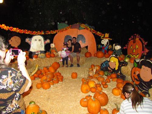 Howl-o-Ween Pumpkin Patch