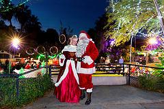 Zoo Lights Santa