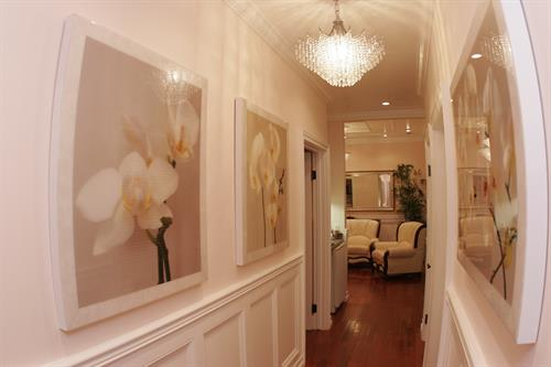 Hallway of the Salon