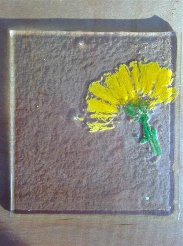 organic burn out fusing glass sample by studio member