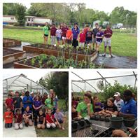 Gardening Adventures with the Tri- Parish Master Gardeners