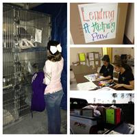 Iberville Pet Pals Service Learning Project