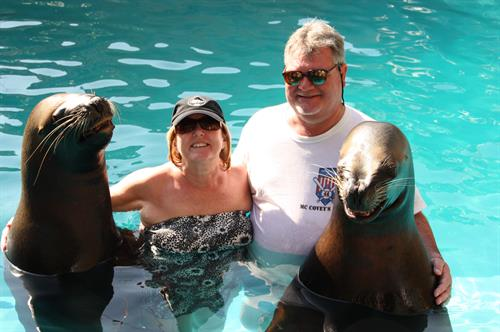 Singer and Paul swimming with Sea Lions in PV