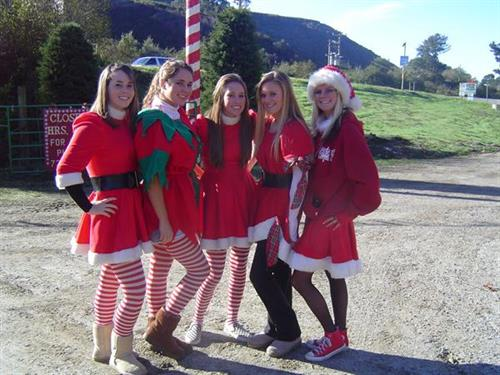 Elves to help you at Santas Tree Farm and Village