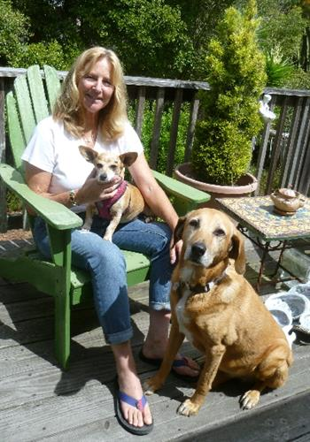 Maggie who was adopted after her humans passed away.  She is now happy with her new friend Amiga!