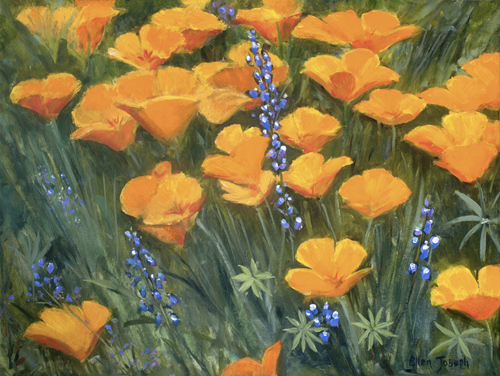 """California Poppies""  by Ellen Joseph"