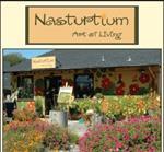 Nasturtium Art of Living