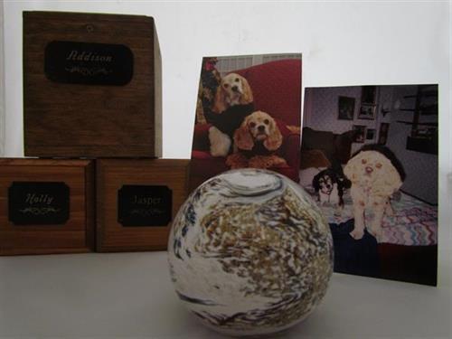 Memorial of three sweet pups