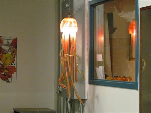 Our award winning jellyfish light!