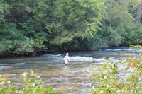 Fishing the Etowah