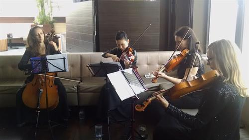 Traditional string quartet playing contemporary pop songs.