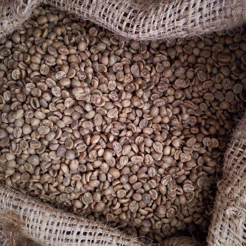 Unroasted green coffee