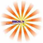 Precision Electrical Company, Inc.