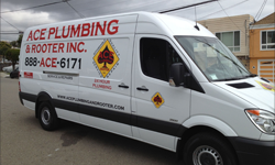 Vehicle Lettering and Decals