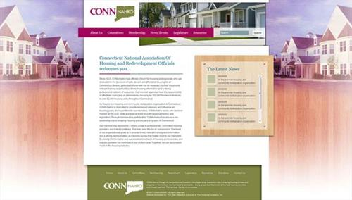 Website we did for Conn-NAHRO.