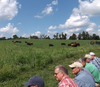 Forage Field Day