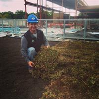 Planting sedum tile at Cherry Capital Foods