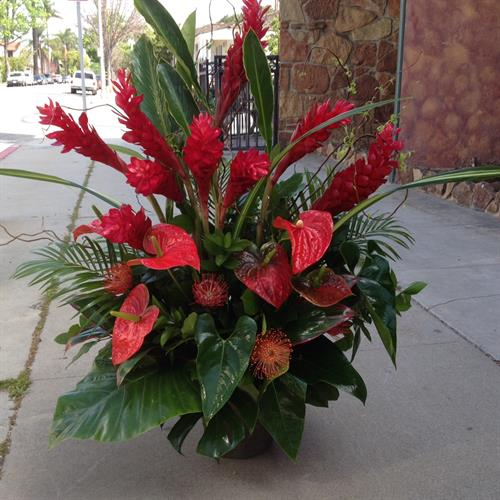 Tropical Red Ginger and Anthirium Church Arrangement for First Congregational Church Downtown Long Beach