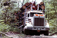 Logging Truck photo