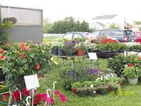 Van Houten Gardens - Perryville Farmers Market - May 2014