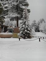 January 2015 - Snow blanketing our resort!