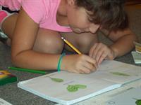 4th Grade Botany