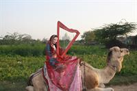 International Harpist AnnaLisa Underhay at the Taj Mahal in India