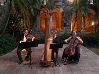 The Elegant Harp String Trio performs at Spanish Monastery in Miami